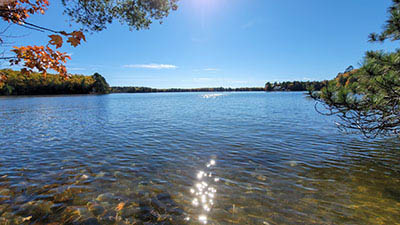 Picture 1 of Big Carr Lake