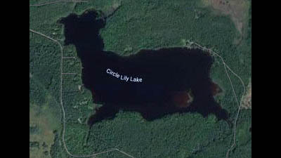 Picture 1 of Circle Lily Lake