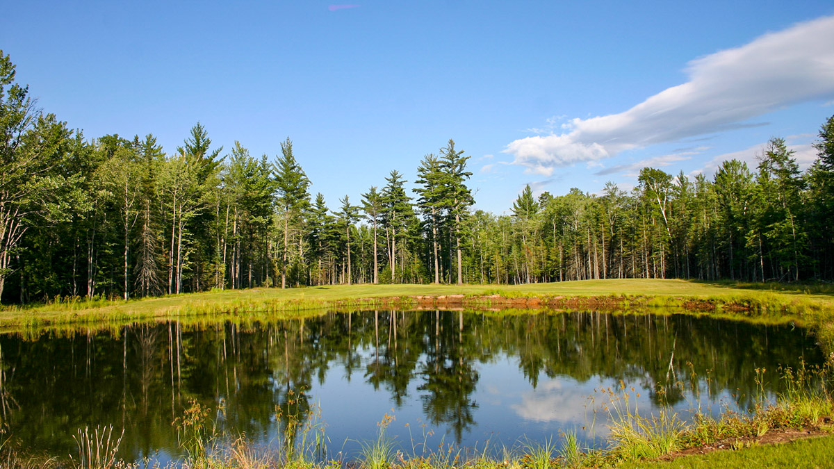 Picture 19 of Clearwater Lake