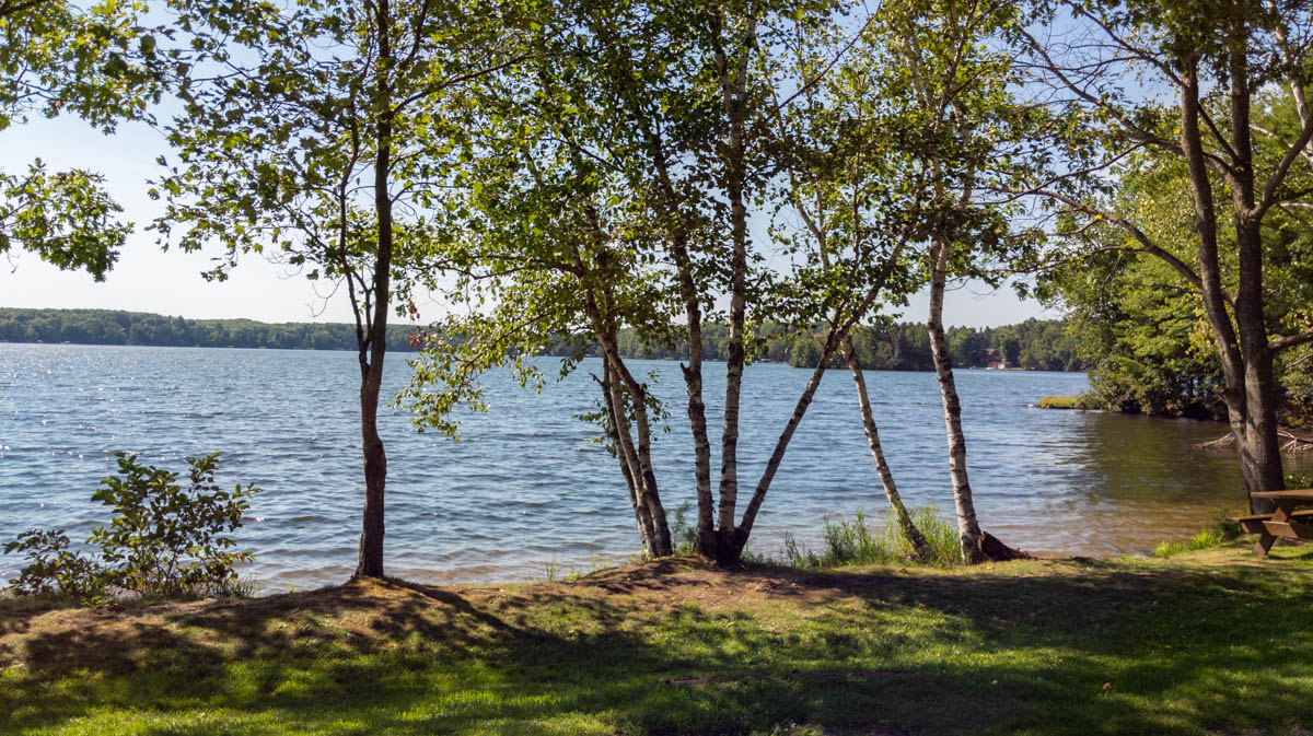 Picture 8 of Crescent Lake