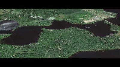Picture 1 of Deer Lake