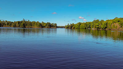 Picture 1 of Forest Lake