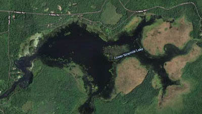 Picture 1 of Lower Ninemile Lake