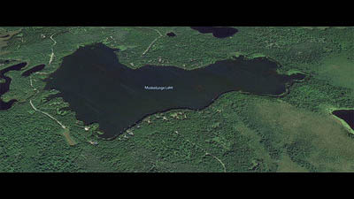 Picture 1 of Muskellunge Lake