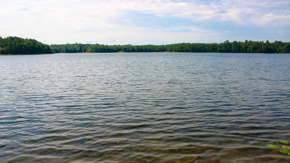 Picture 5 of South Two Lake