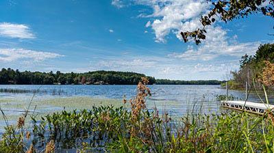 Picture 1 of Squash Lake