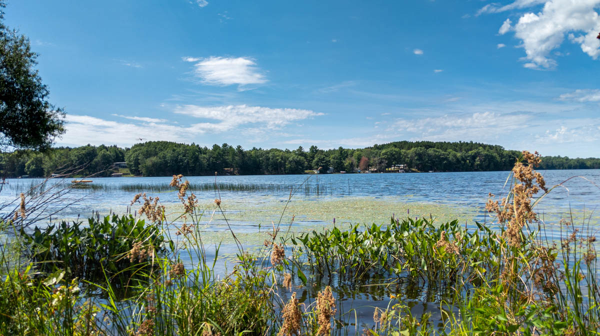 Picture 2 of Squash Lake
